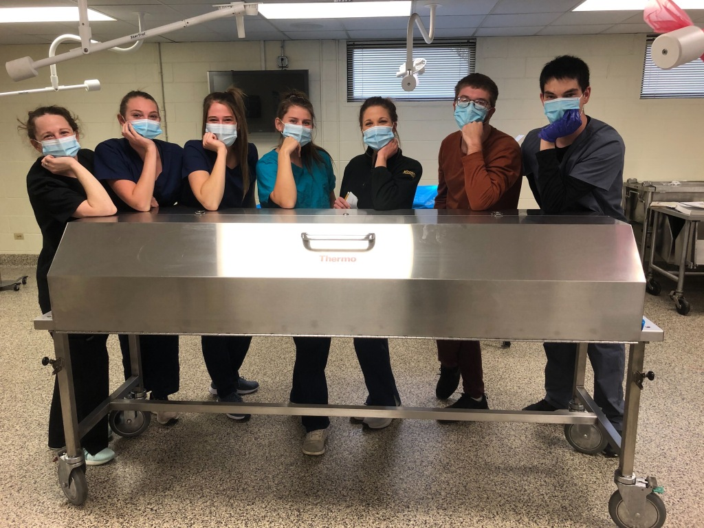 First year students in cadaver lab